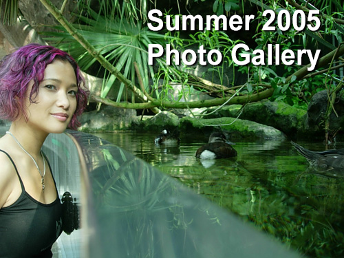 Suzy Solar Summer 2005 Photo Gallery